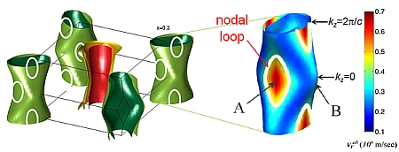 nodal_loops.jpg